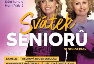 SS-poster-2021-Hodonin-A4.jpeg