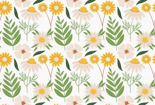 flower-5239814-1920.jpg