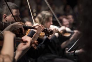violins-1838390-1280.jpg